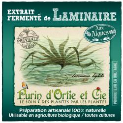 Extrait Fermenté de Laminaire(Purin): Préventif