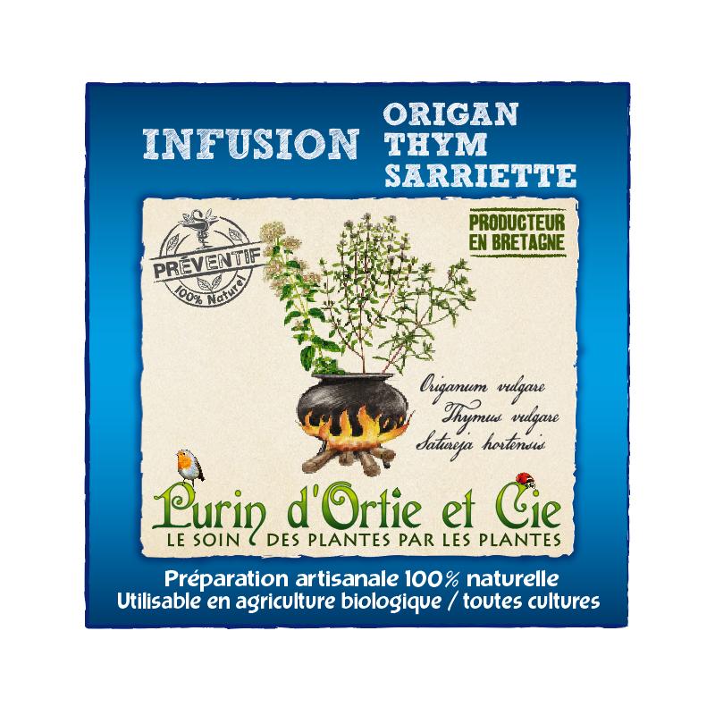 Infusion Origan thym Sarriette