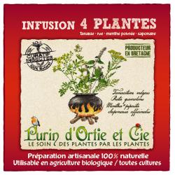 Infusion 4 Plantes