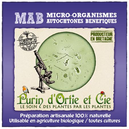 Micro-Organismes Autochtones Bénéfiques