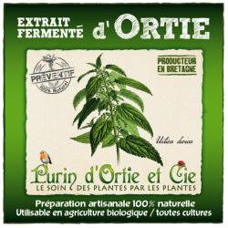 Extrait Fermenté d'Ortie (purin): Préventif